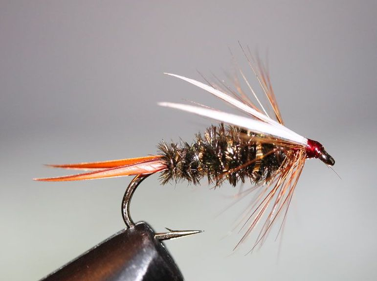 Prince Nymph Fly Pattern