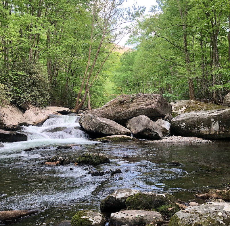 Little River GSMNP Tennessee
