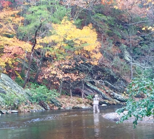fall fishing on little river