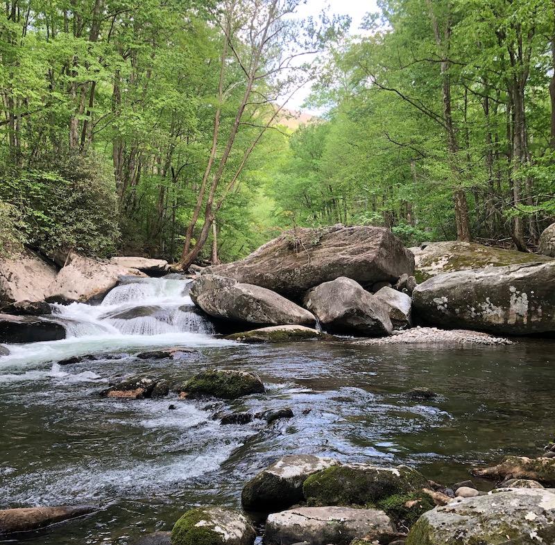 Little River GSMNP Tennessee