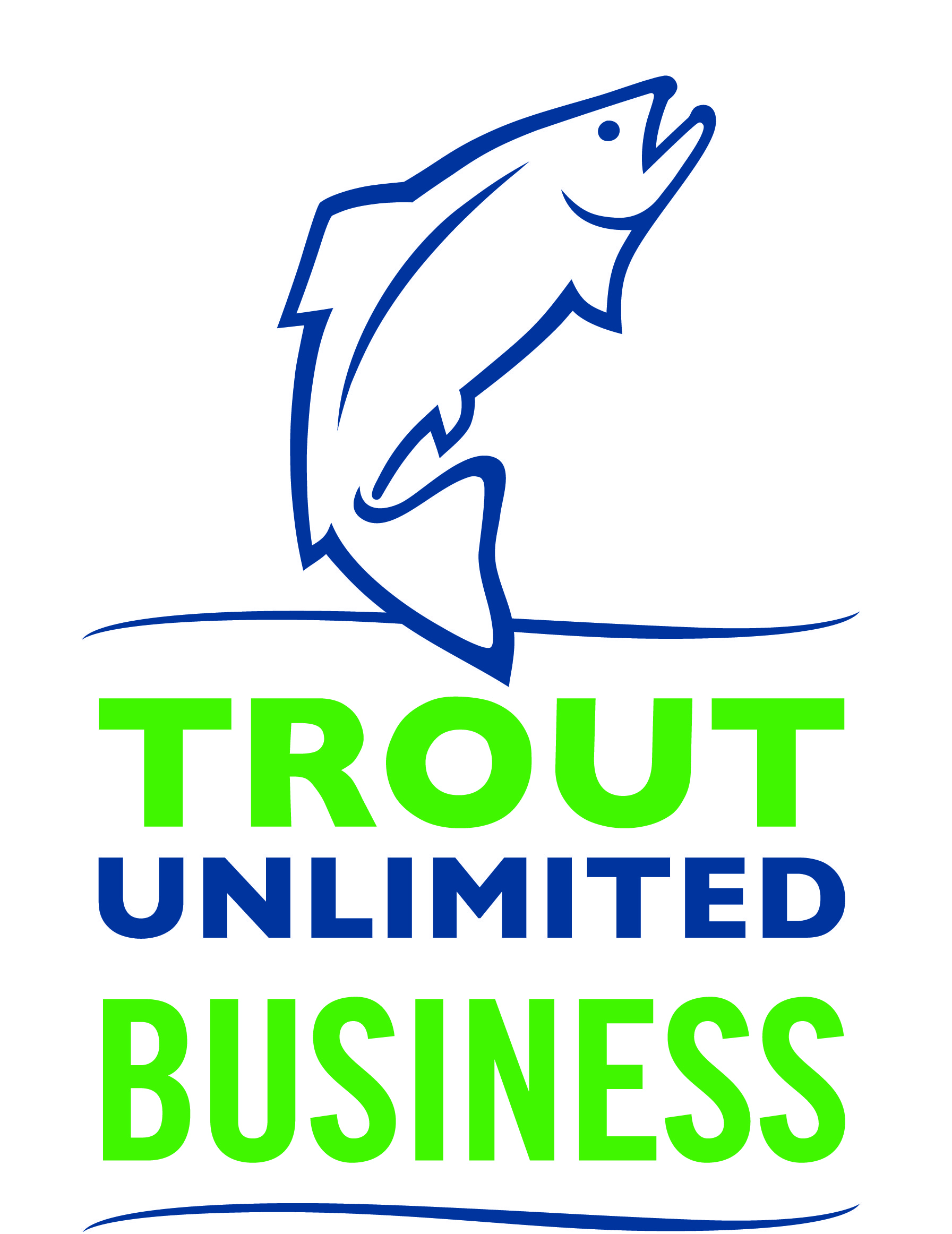 TU Business Logo