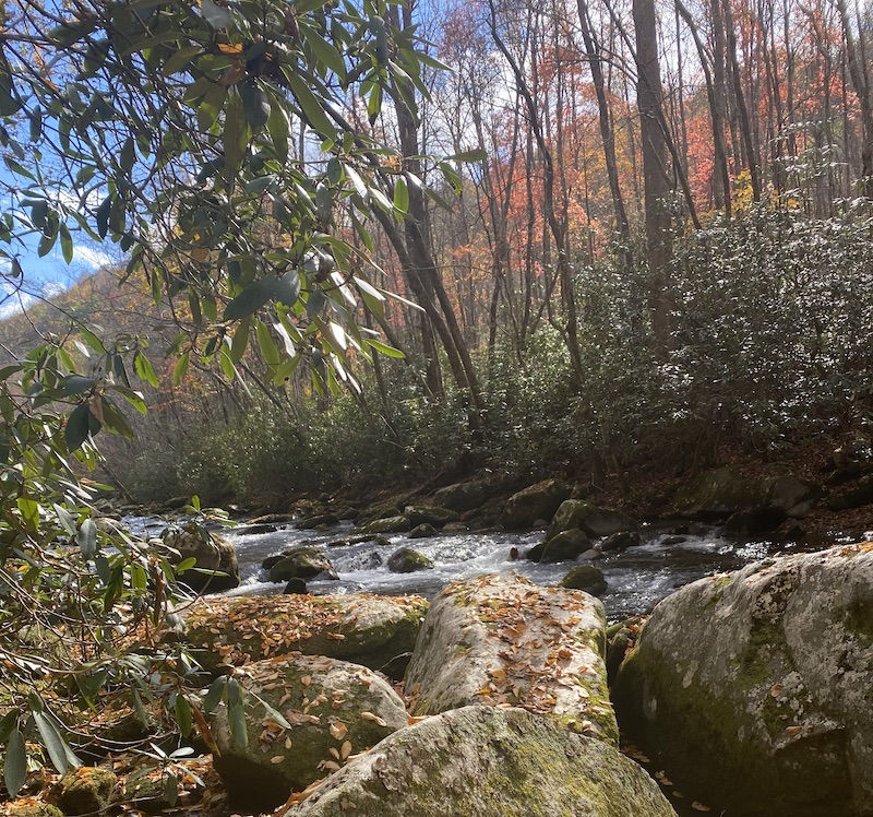 Little River Smoky Mountains Tennessee