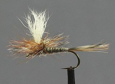 Parachute Adams