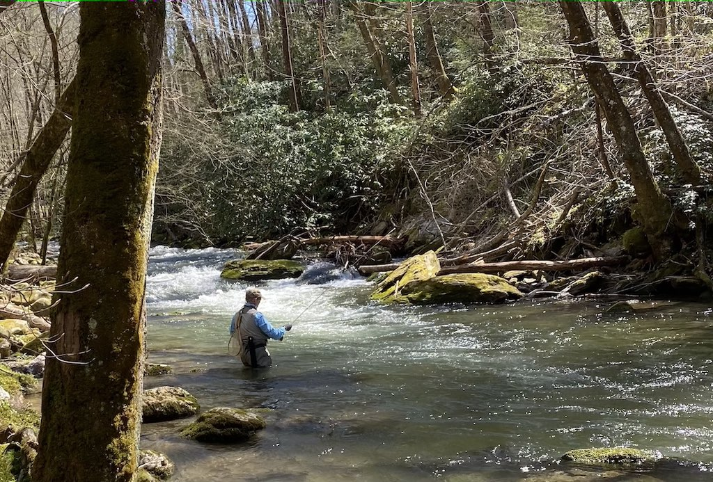 Early Spring Fishing in the Smoky Mountains