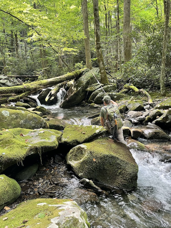Fly Fishing a Smoky Mountain Trout Stream